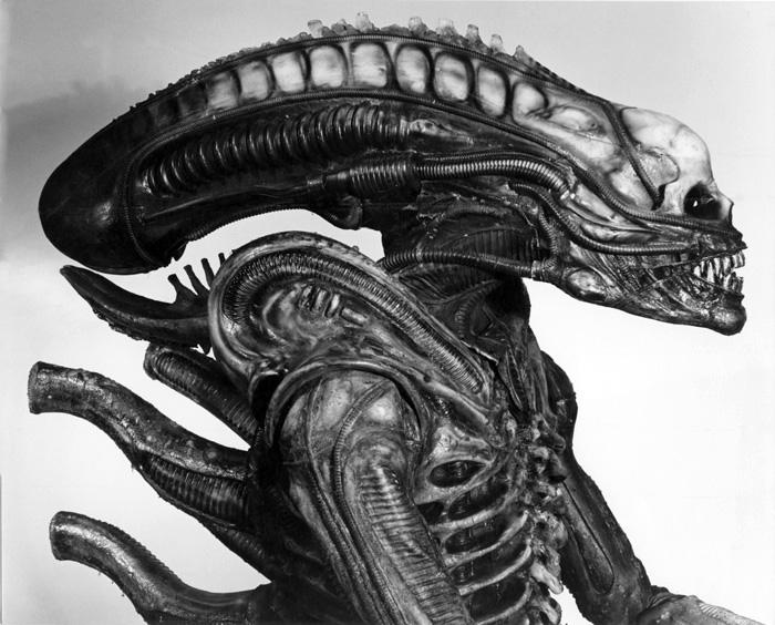 01063_Alien_Sibthorp-3.jpg