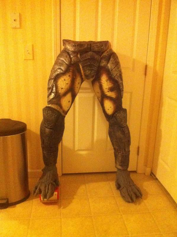 10652-legs.jpg