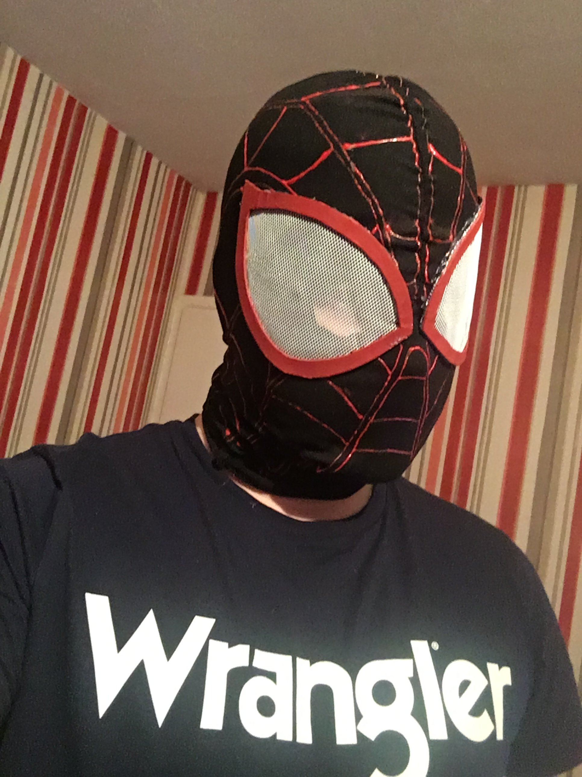 Spider-Man mask template - RPF Costume and Prop Maker Community