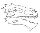 Basilisk_Skull.jpg