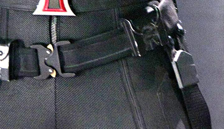 Black Widow cropped.jpg