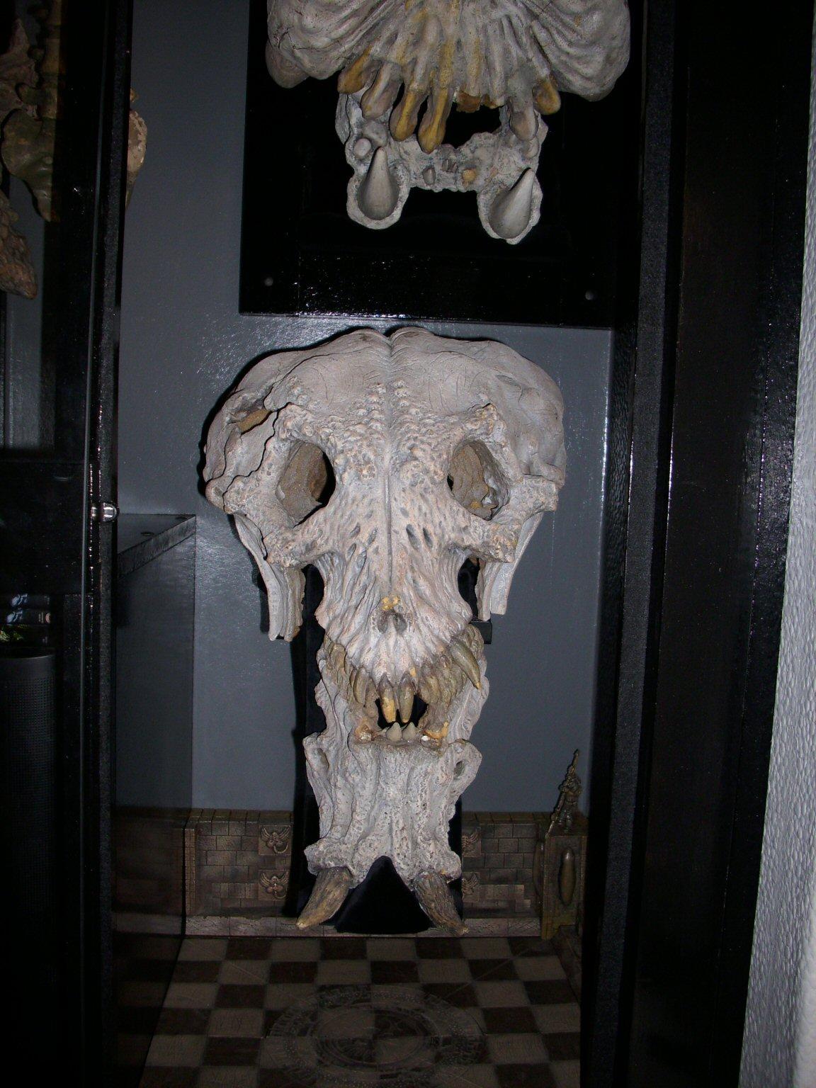 c_skull3.jpg