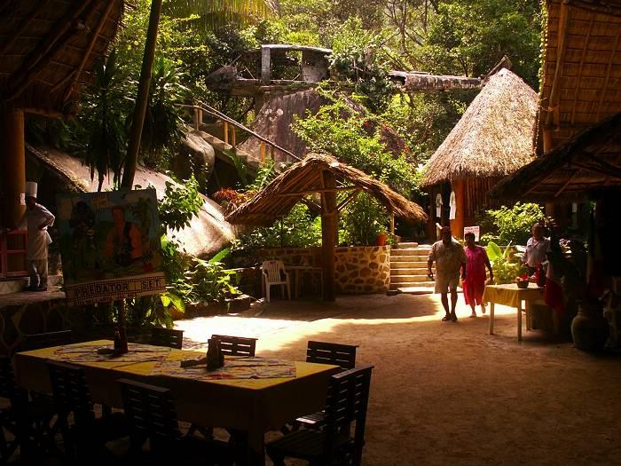 canopy-restaurant-mismaloya.jpg