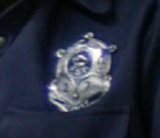 Deputy badge close up.png
