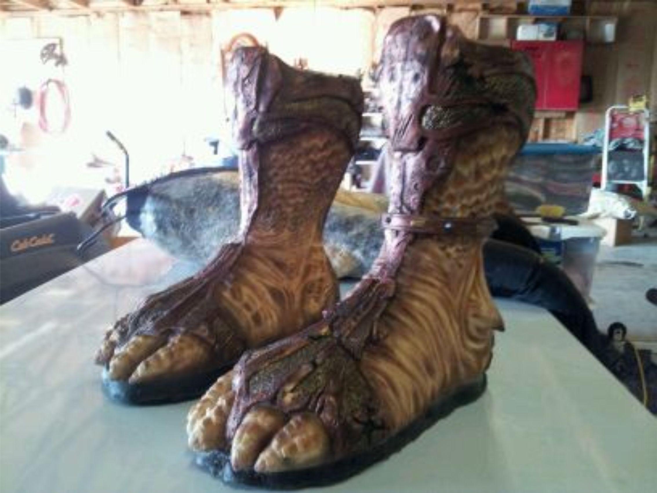 desert feet.jpg