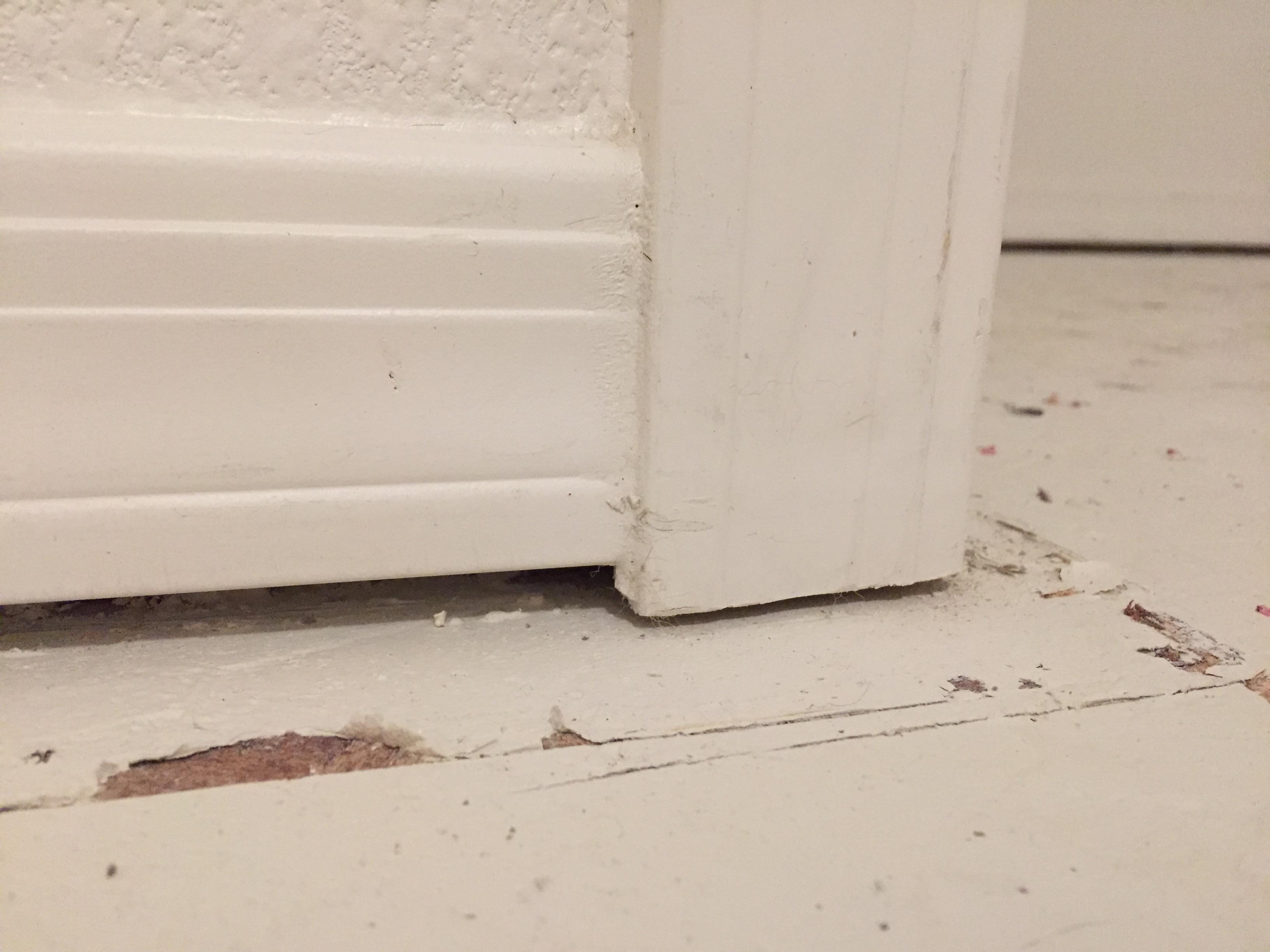 DoorCasing1.JPG