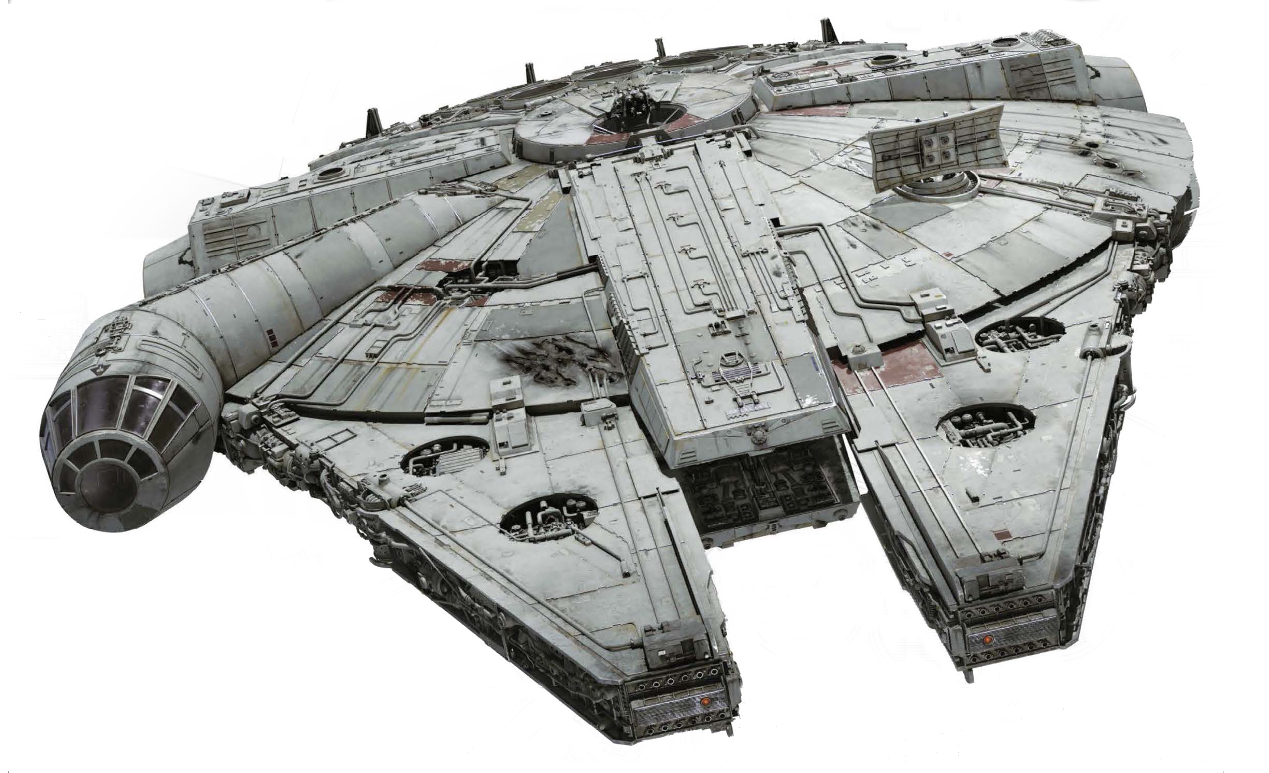 Falcon Front on.jpg