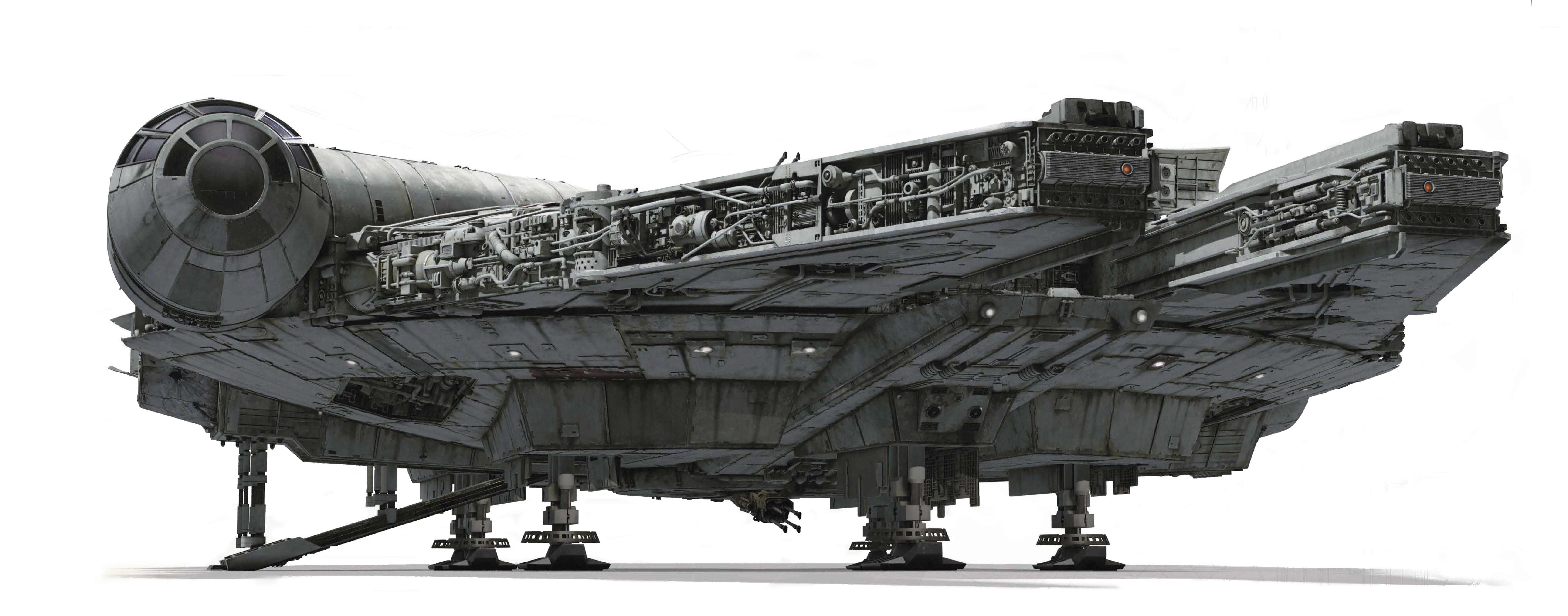 Falcon lowshot.jpg