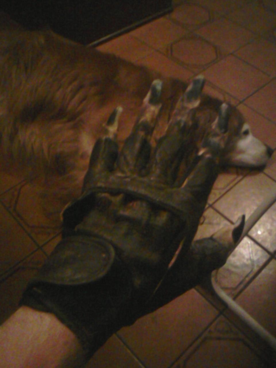 final_gloves.jpg