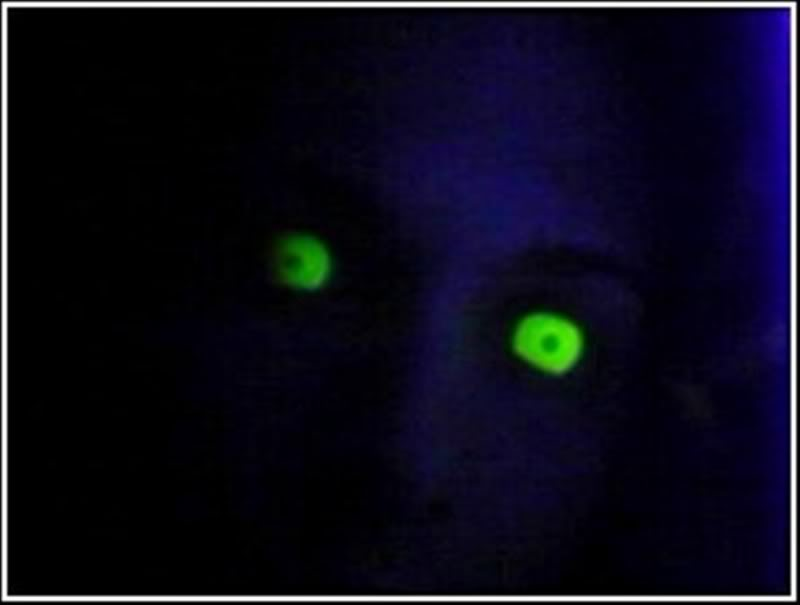 Glowingeyes.jpg