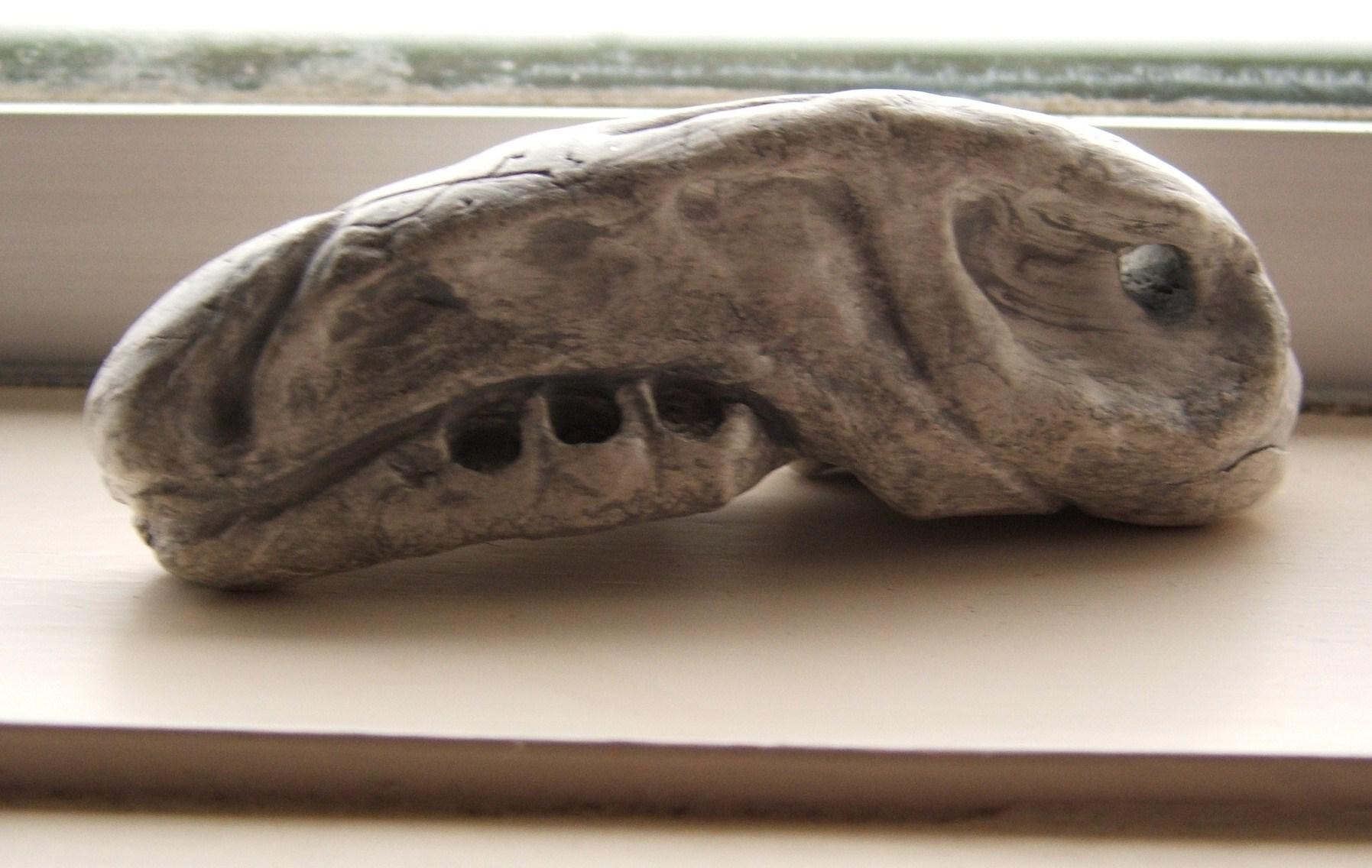 head bone.JPG