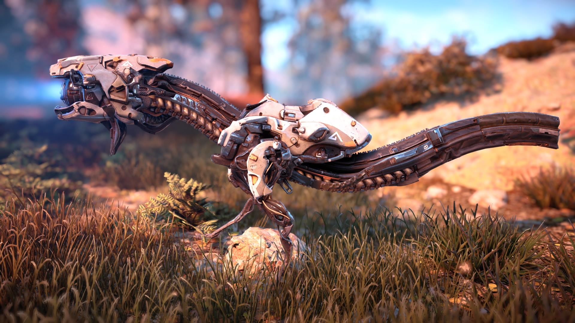 Horizon Zero Dawn™_20181126181551.jpg