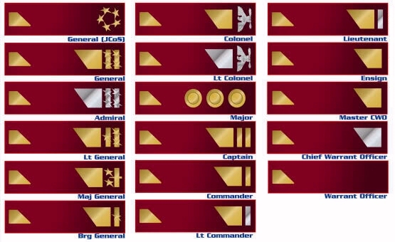 insignia2.jpg