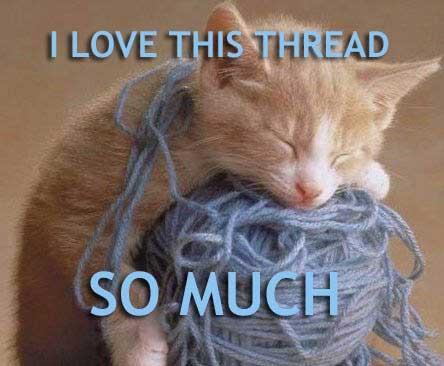 Kitty loves thread 2.jpg