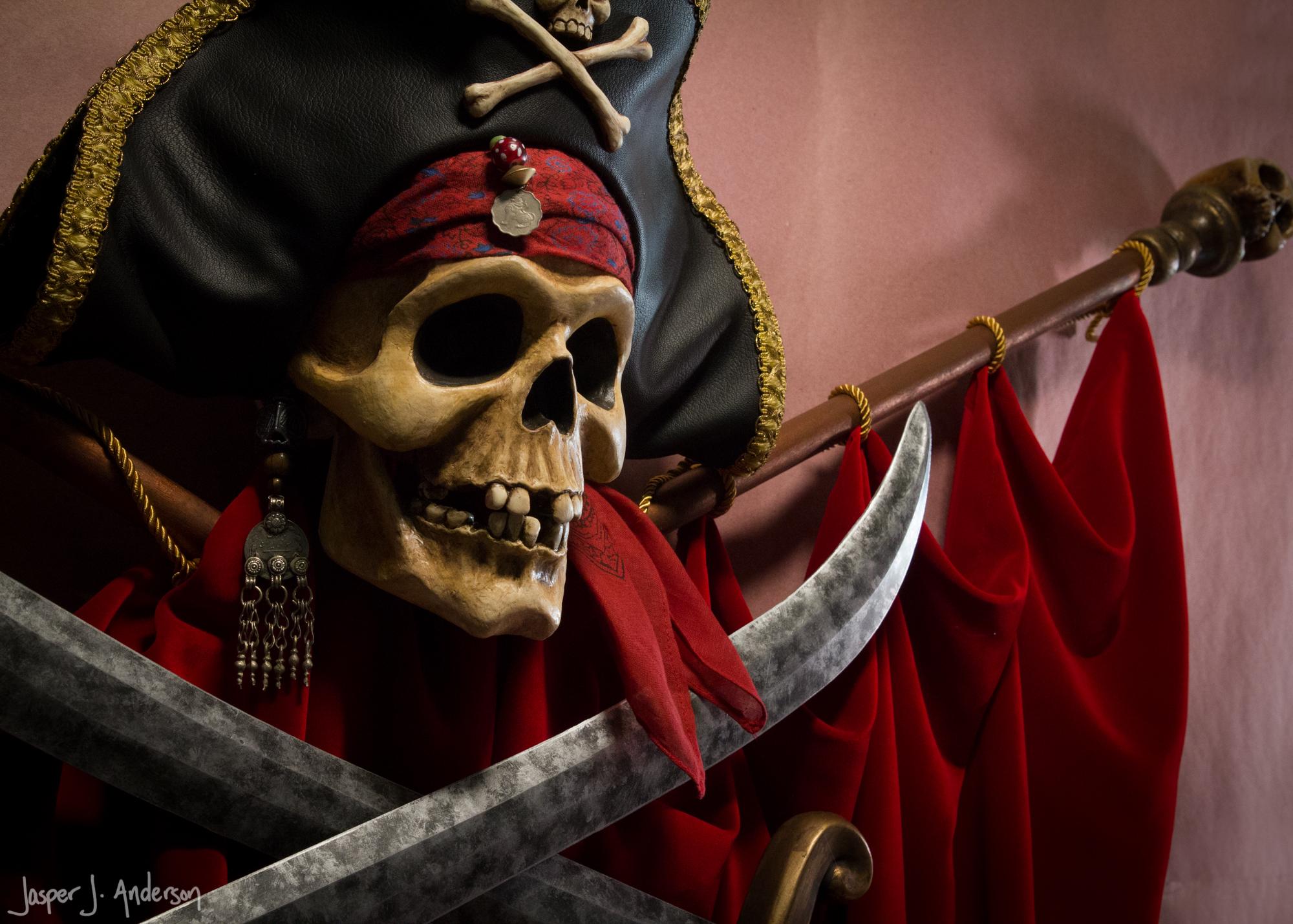 Modern Talking Pirate Skull-0046.jpg