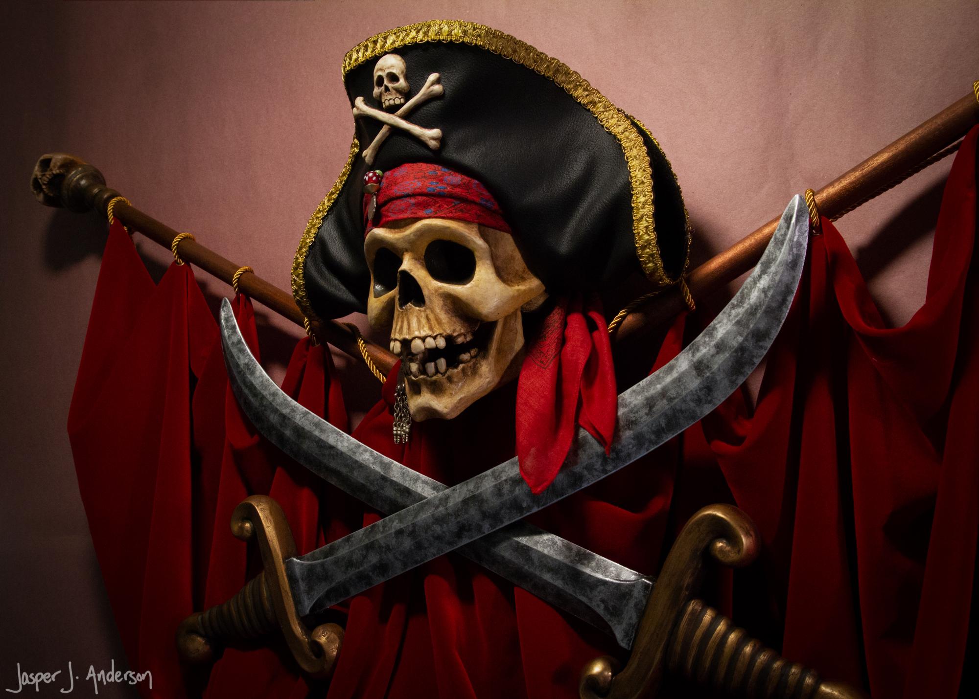 Modern Talking Pirate Skull-0062-Edit-2.jpg