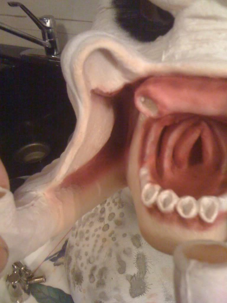 mouth2.jpg