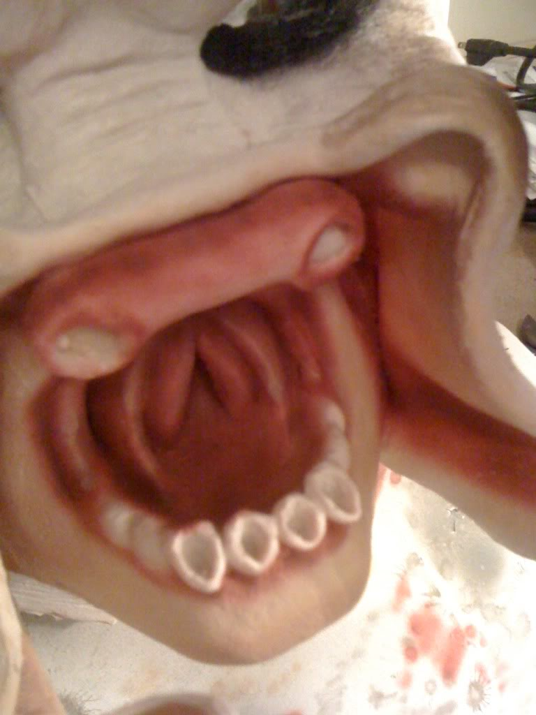 mouth3.jpg