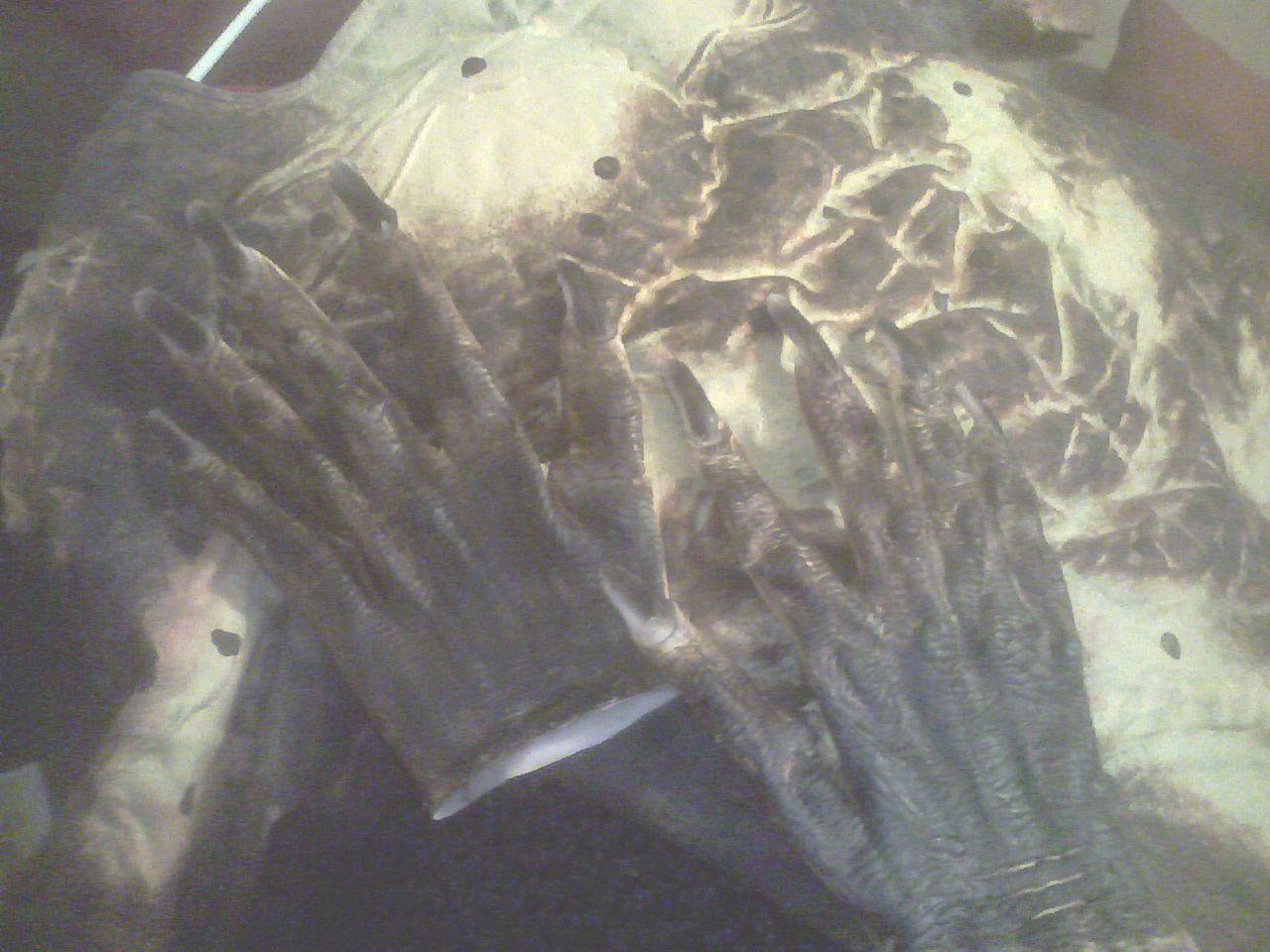 my_gloves.jpg