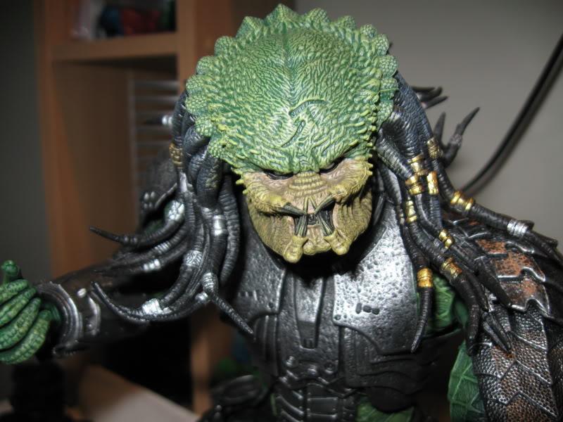 predator006.jpg