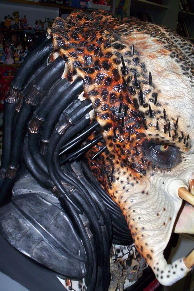 predator05.jpg