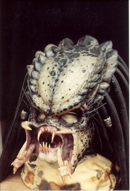 Predator112.jpg