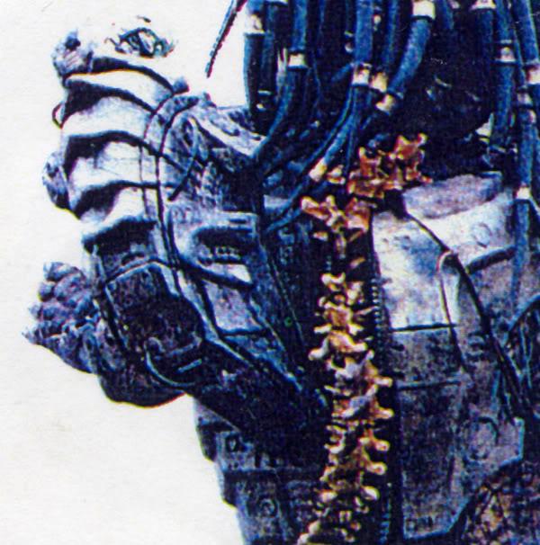 Predator19.jpg