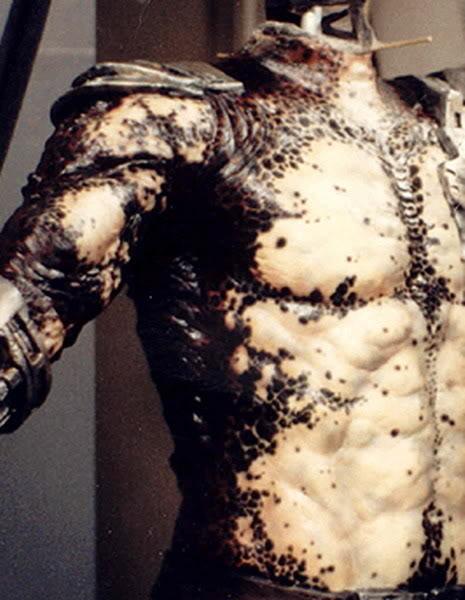 Predator23.jpg