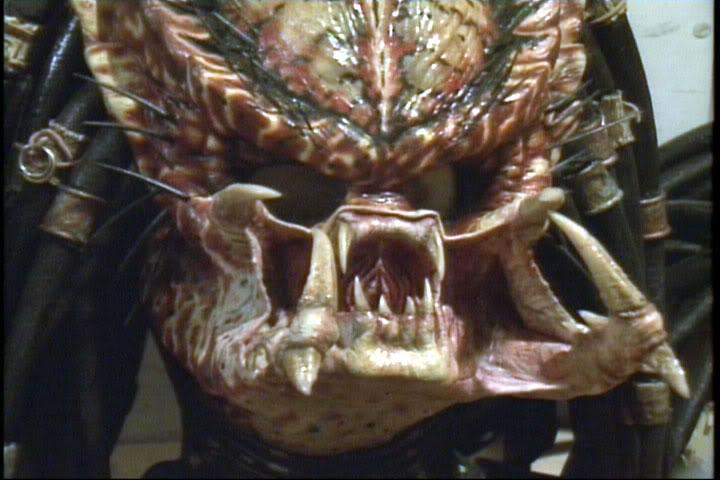 Predator84.jpg