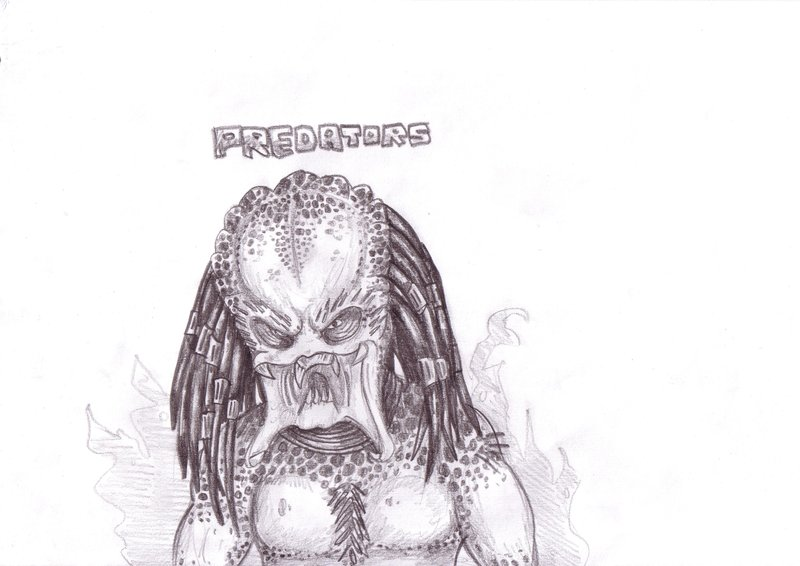 predator_by_goldenhybrid-d3cy6tq.jpg