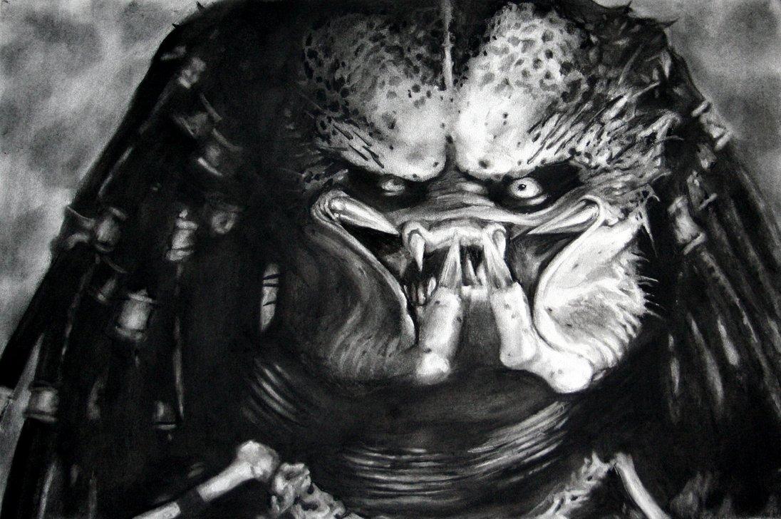 predator_by_lu_da_chris.jpg