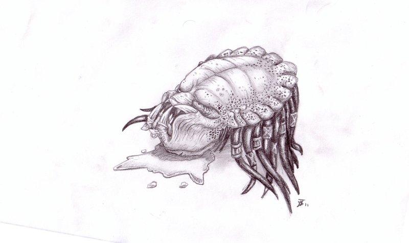 predator_dont_lose_your_head_by_goldenhybrid-d3g6ajz.jpg