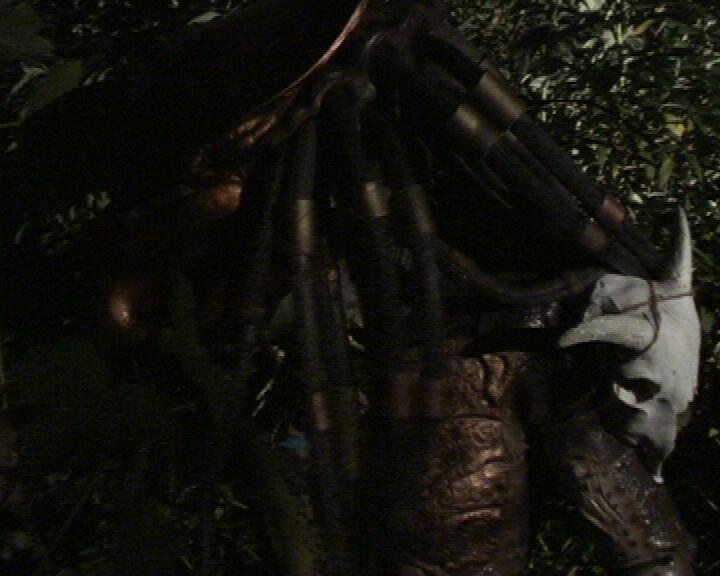 Predator_Vengeance_3.jpg