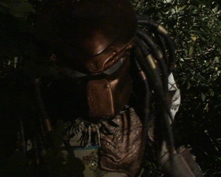 Predator_Vengeance_4.jpg