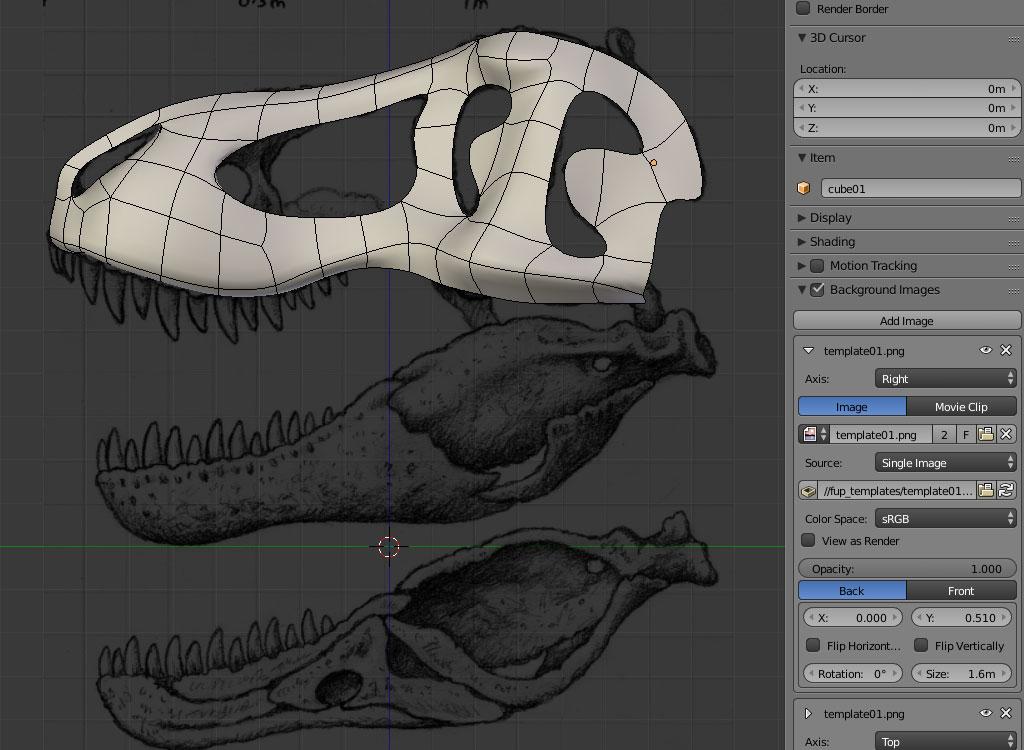 rex_skull_wip_02_by_strick67-dc9c80f.jpg