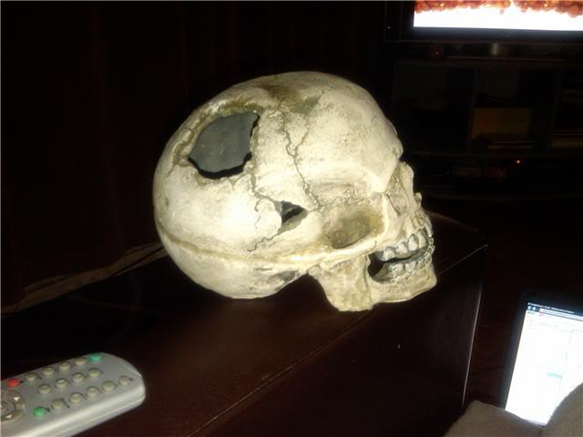 skull1.jpg