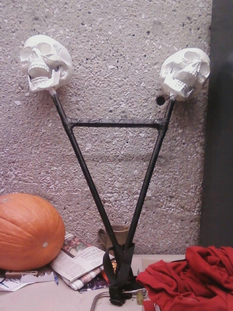 skull_trophy_mount.jpeg