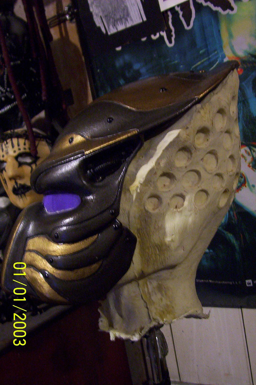 skulls_on_sticks_064.jpg
