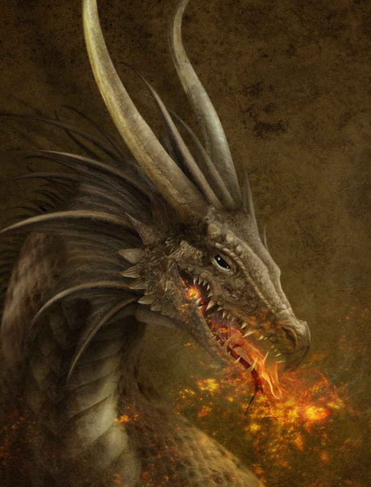The_Dragon_wallpaper_by_TheOutcast1821.jpg