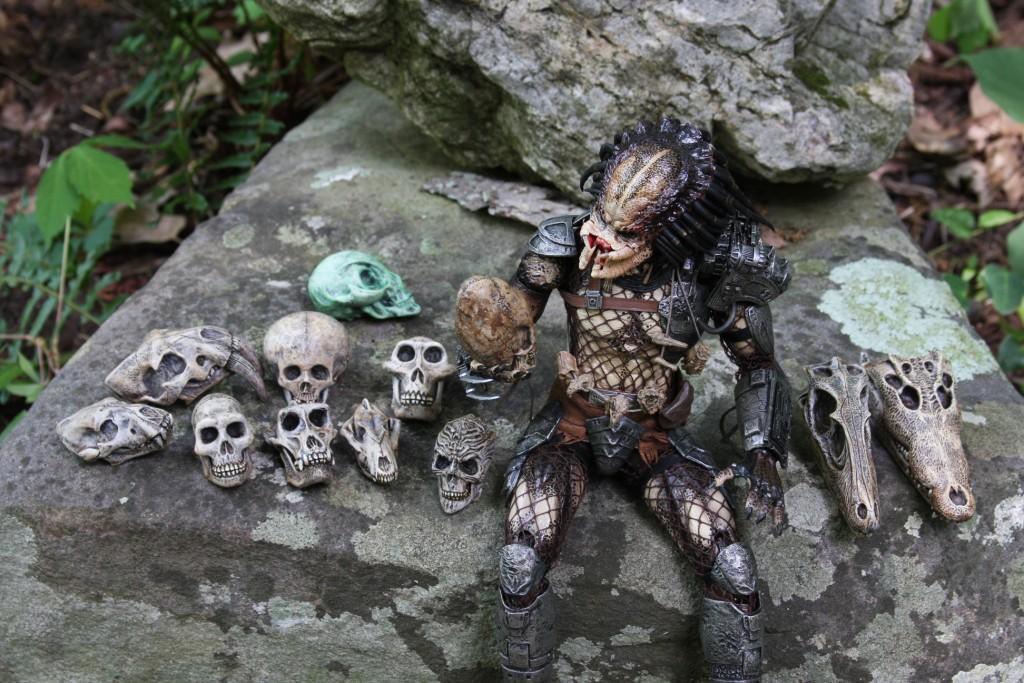 trophy_skulls_IMG_3632.JPG