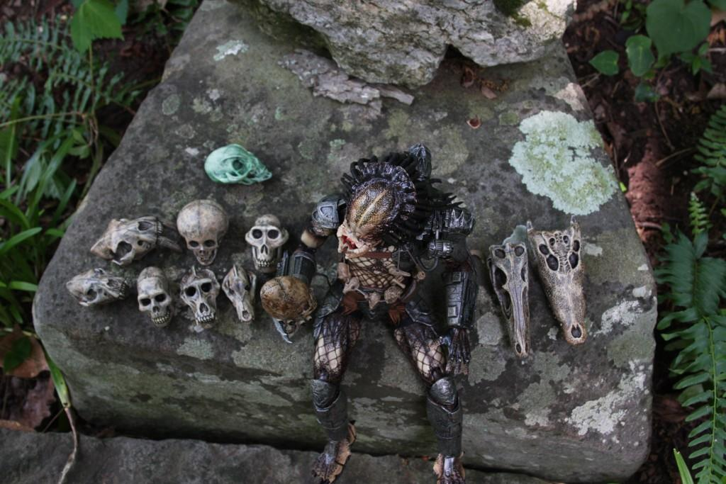 trophy_skulls_IMG_3633.JPG