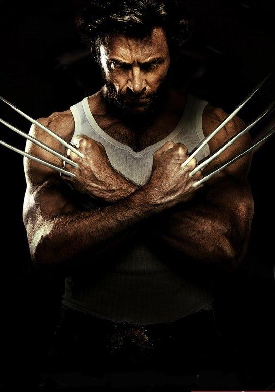 wolverine___Wolverine_Movie.jpg