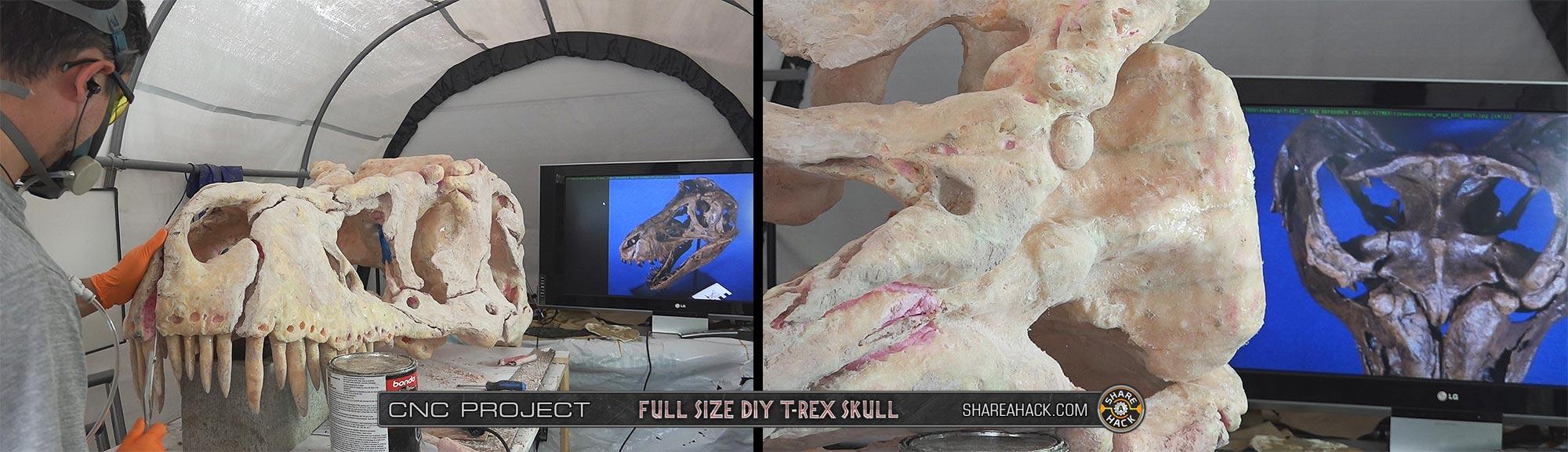 x-skull-cnc-foam_3dmodel_42-real-trex-fossil-skull.jpg