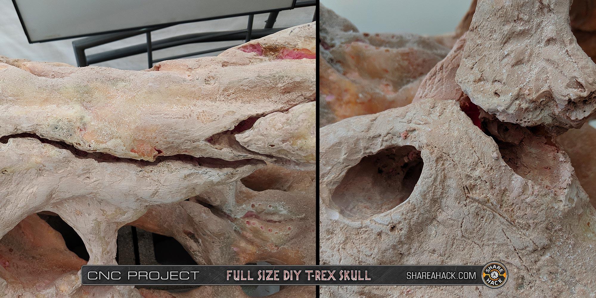 x-skull-cnc-foam_3dmodel_43-real-trex-fossil-skull.jpg