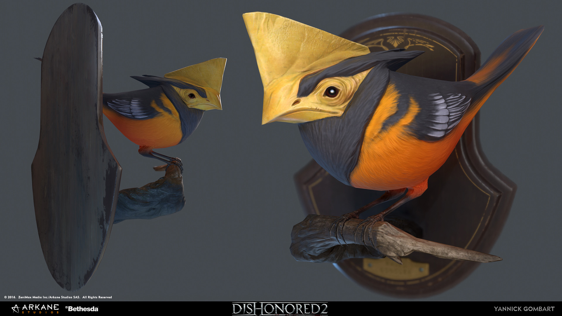 yannick-gombart-bird-02.jpg