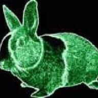 neonrabbit